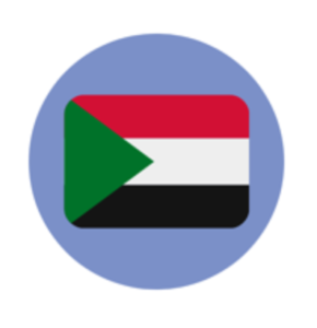 A picture of the Sudanese flag
